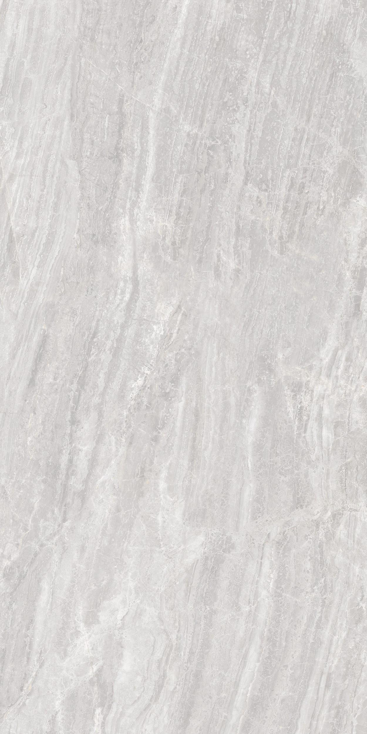 24 X 48 Cosmic Grey HIGH POLISHED Rectified Porcelain Tile